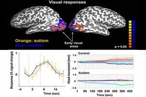 sensory perception news articles