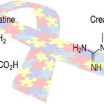 creatine-cyclocreatine-autism-ribbon