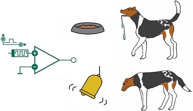 Pavlov'un köpekleri Deneyi
