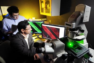 Scientists in front of computer monitors examine microscope images showing the growth of axons.