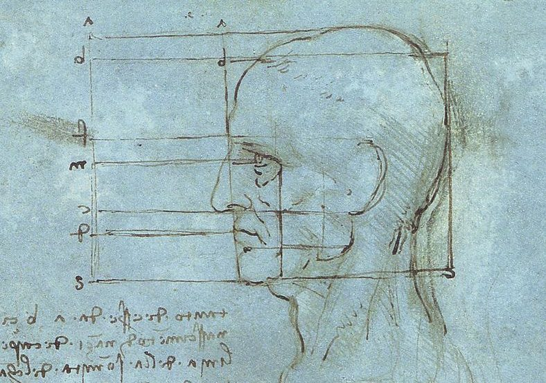The image is a drawing of Leonardo da Vinci. named proportions of the head.