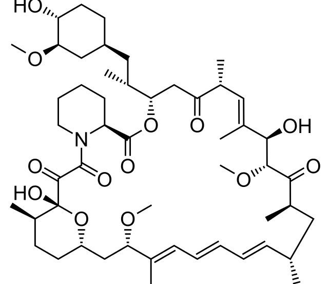 The image shows a structural diagram of rapamycin.