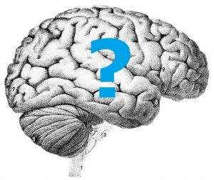 The image shows a drawing of a brain with a blue question mark.