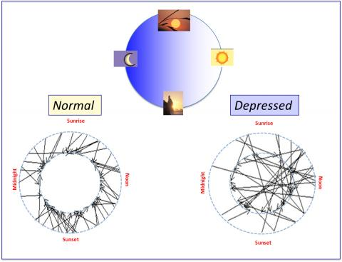 The diagram shows how the circadian rhythm affects depression. The caption best describes the image.