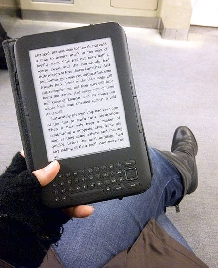 This image shows a person reading from an e-reader.