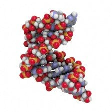 This is a model of microRNA.