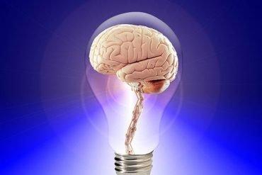 This is a brain inside a light bulb.