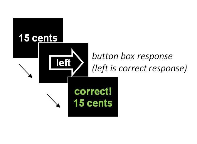 The image shows examples used in the computer task associated with the research.