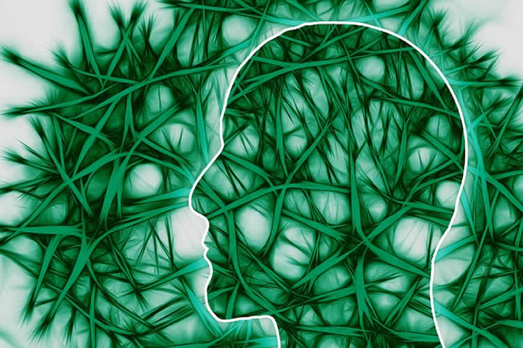 The image shows a human head outlined against green neurons.