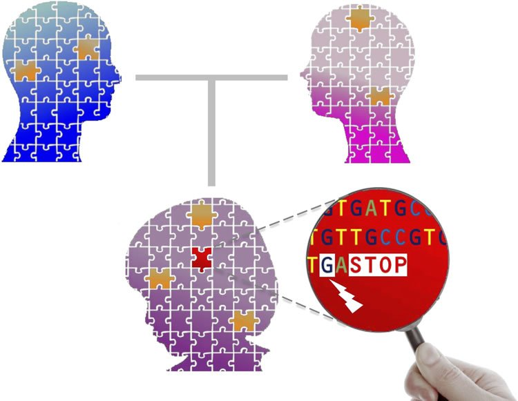 The image shows heads with jigsaw paterns inlayed. A hand holds a magnifying glass revealing DNA code.