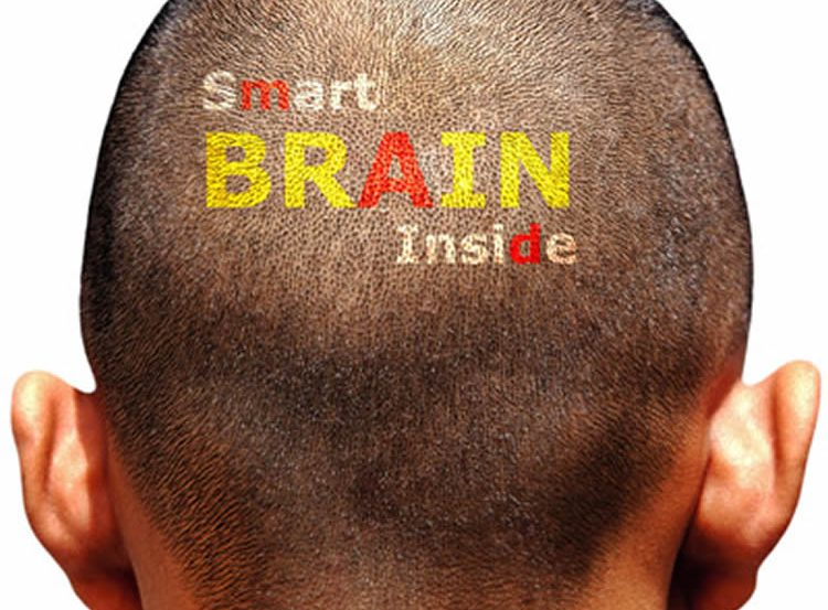 The image shows the back of a male's head with the word smart brain inside imprinted on the hairline.