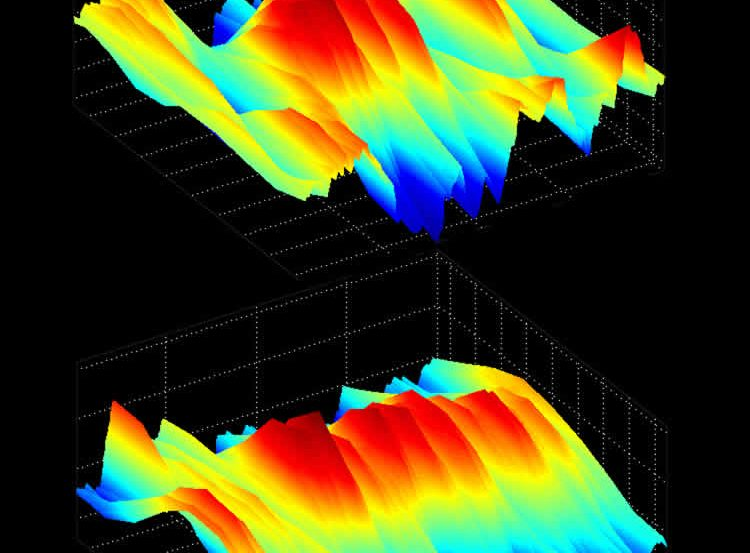 This image shows the alpha brain waves