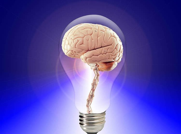 This image shows a brain in a light bulb.