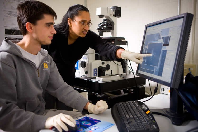 This image shows a the researchers looking at their data on a computer screen.