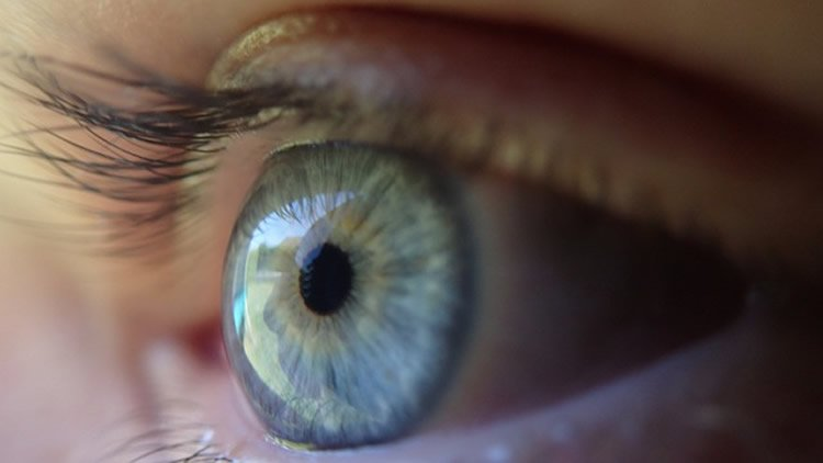 This image shows a blue eye.