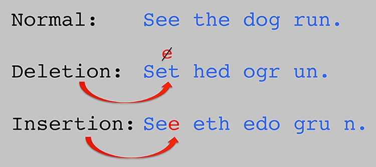 The image shows a sentence being rearranged.