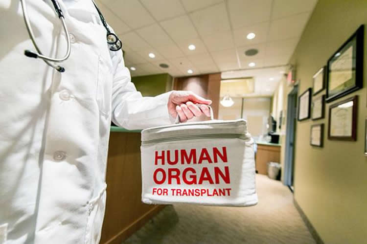 The image shows a person in a doctor coat holding an organ transplant bag.