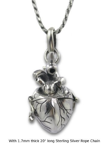 Sterling silver 3d human heart necklace with locket and pill box sterling silver 3d human heart necklace with locket and pill box neuroscience news aloadofball Gallery