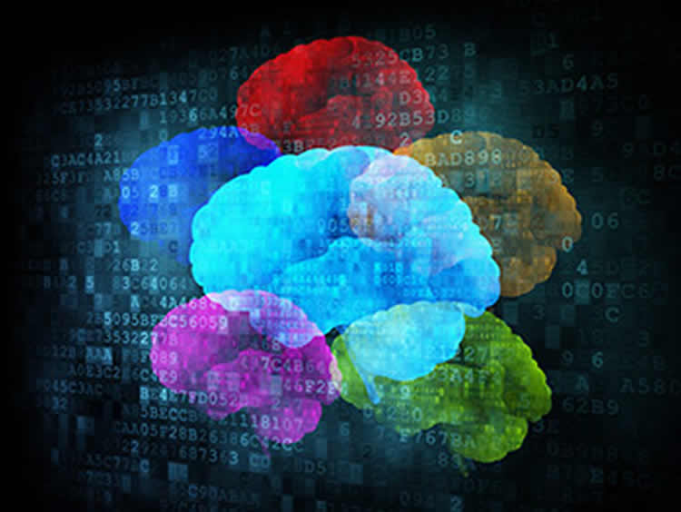 The image shows multiple colored brains and computer coding.