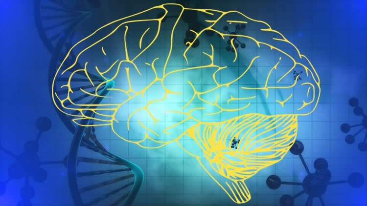This image shows a yellow brain against a blue background with DNA strand drawings.
