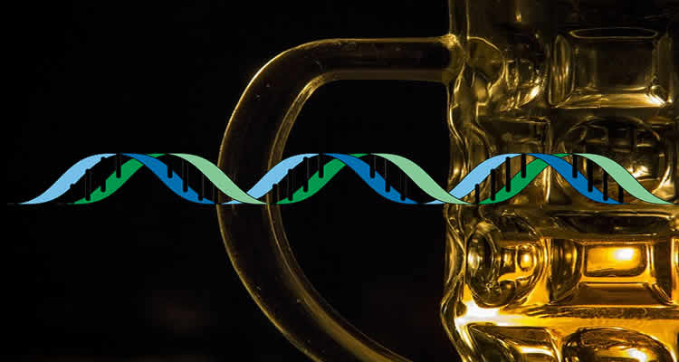 The image shows a beer glass and a strand of DNA.