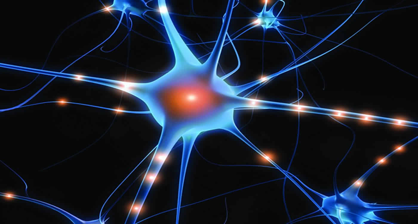 This is a neuron.