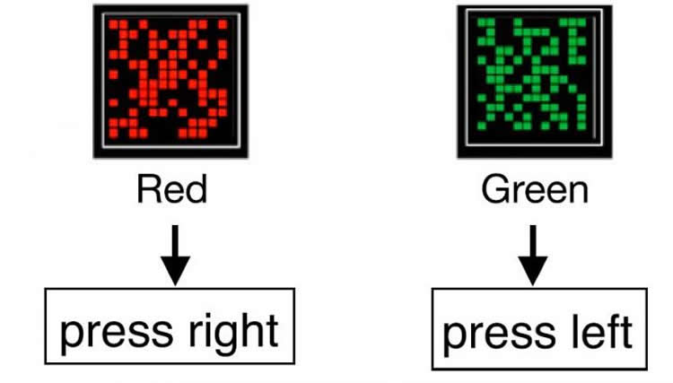 This shows s red and green button with the instructions to press either left or right written under them.