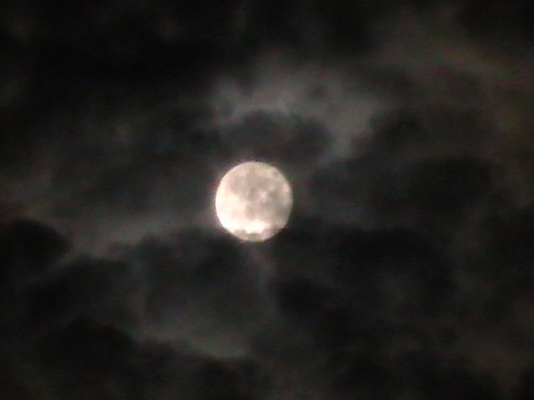 This is a cool, creepy picture of a full moon.