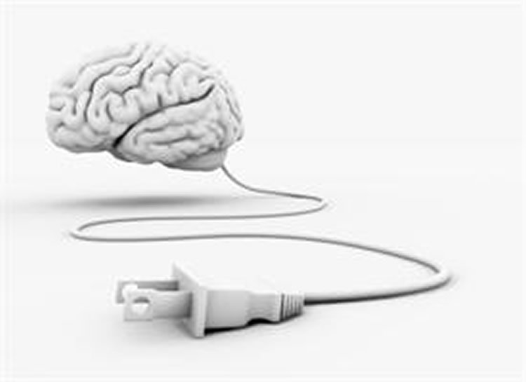 This shows a brain model connected to a power cord.