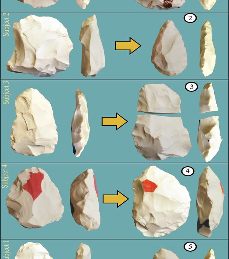 This shows the hand axes used.