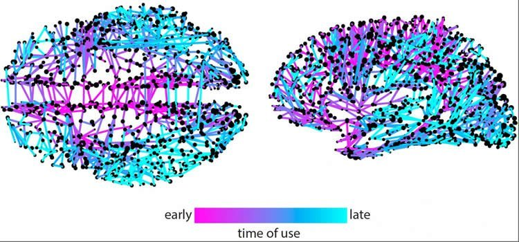 This image shows neural networks which are used to spread information.