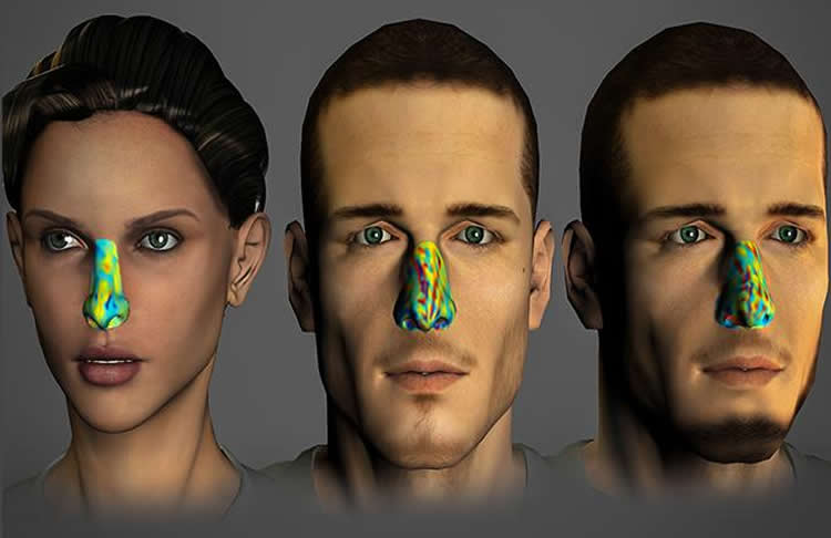 This image shows three computer generated faces with different colors overlayed on the noses.