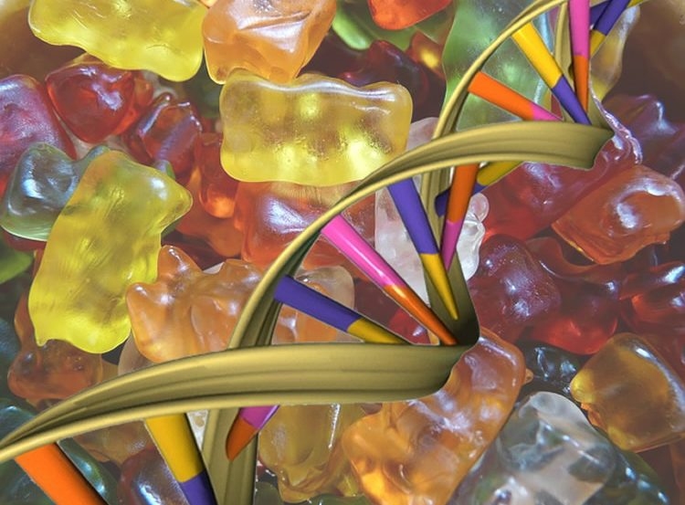 This graph shows gummy bears and a strand of DNA.