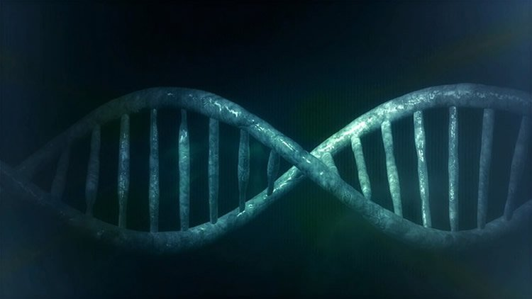 This image shows a double helix DNA strand.