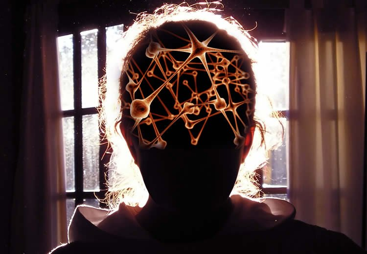 This is the outline of a woman. Inside here head is an illustration of neurons.