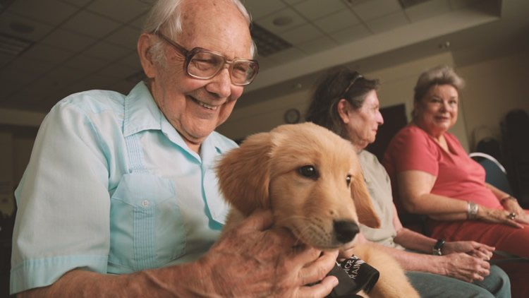 This image shows an old man with a puppy.