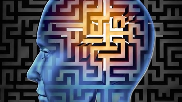 This shows the outline of a head made up of a maze.