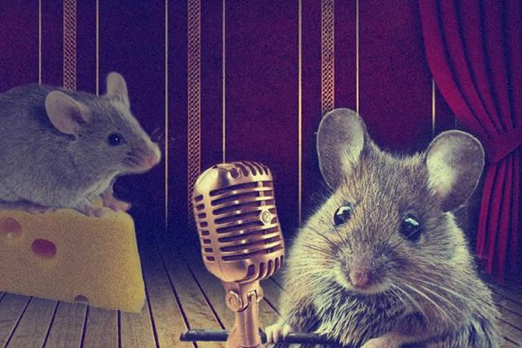 This shows a mouse singing into a microphone.