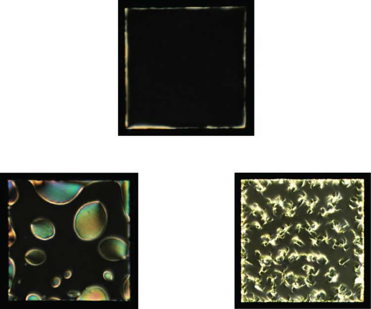 Image shows the liquid crystal cells.