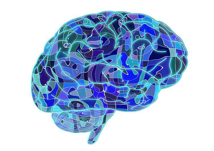 Image shows a brain made up of blue lines and patterns.