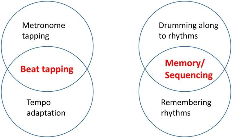 Image shows a schematic of hypothesized relationships between performance on Beat tapping and Memory/Sequencing tests.