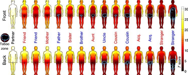 Image shows the body maps.