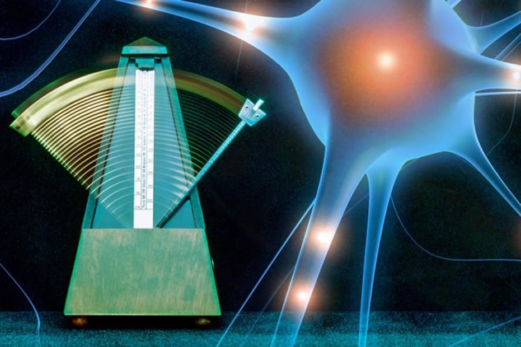 Image of a neuron and a metronome.