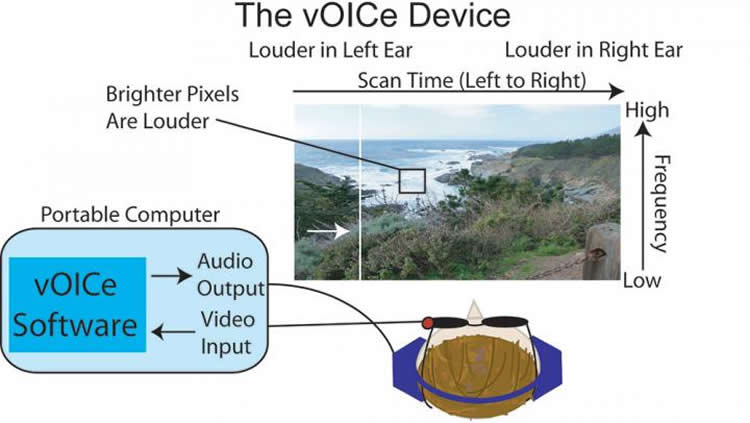 Diagram shows how the vOICe system works.
