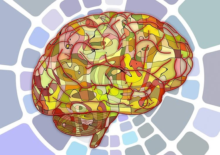 Image of a brain with a mosaic background.