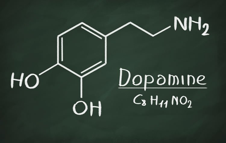Illustration shows the molecular structure of dopamine on a chalk board.