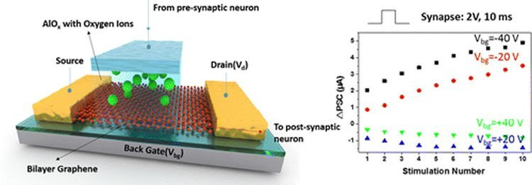 Diagram of the artificial synapse.