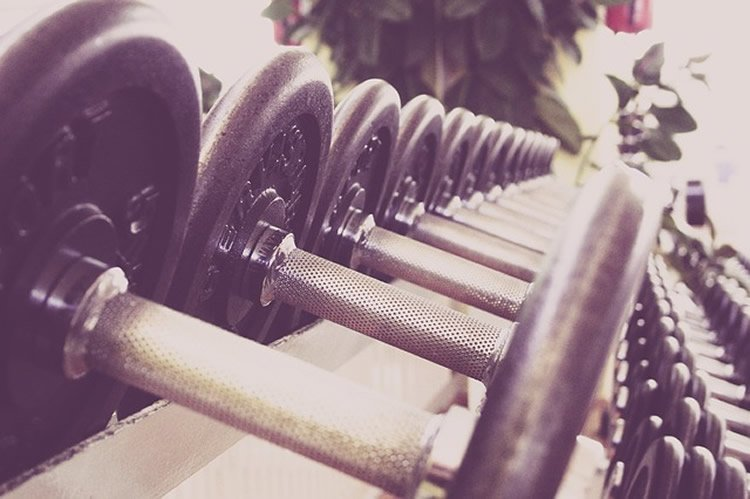 Image shows free weights.