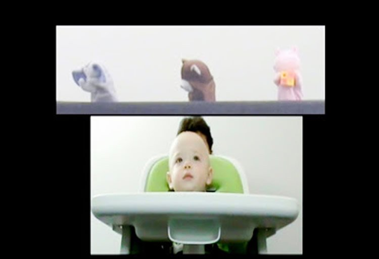 This shows a baby and some puppets.