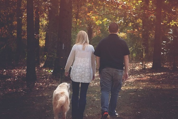 Photo of a couple walking a dog.